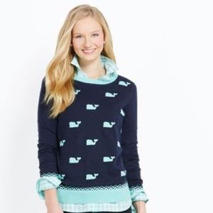 VV whale sweater